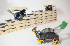 Self-organizing robots: Robotic construction crew needs no foreman - Technology Org
