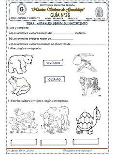 30 Ideas De Recursos Naturales Renovables Recursos Naturales Renovables Los Sentidos Para Niños Recursos Naturales