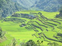 Visiting the Batad Rice Terraces in the Philippines