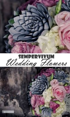 Sempervivum Wedding Flowers - knock their socks off with your wedding bouquet made of plants... Hens and Chicks | Succulent Wedding