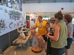 Killbear Provincial Park, Visitor Centre Summer 2014, Centre, Places To Visit, Camping, Park, Reading, Books, Travel, Campsite