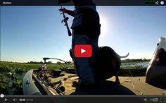 Matted - Kissimmee Chain Bass Fishing - AnglingAuthority.com