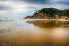 https://flic.kr/p/xP2DEm | Indian Beach Oregon | Please check me out at Gary P Kurns Oklahoma Photography