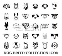 http://us.123rf.com/450wm/carlacdesign/carlacdesign1508/carlacdesign150800168/44502259-set-of-dog-breed-icons--vector-illustration.jpg?ver=6