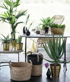 Home | Selected | Green Light | H&M US