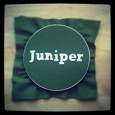 Nature names are crazy right now! Juniper is a super sweet, spunky name with lots of nickname potential that is hot among hip and indie parents, recalling the fragrant, berry-producing Juniper shrub. #babynames #girl #naturenames
