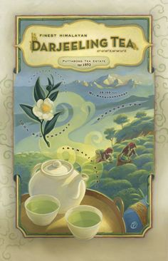 Darjeeling Tea Poster Illustration. Beautiful colours!