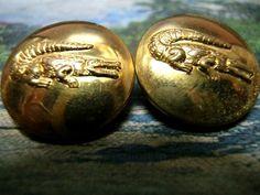 Vintage+Alligator+Metal+Buttons+(set+of+7)