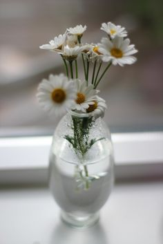 A simple little vase with Daisies, my favorite.  **** (by el.ly.)