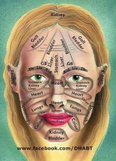 sistema linfático facial