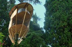 treetop builder - website