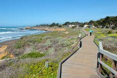 Moonstone Beach Boardwalk // Cambria, CA