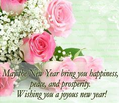 pink roses happy new year poem