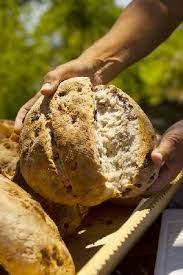 fresh home made bread in the wood oven