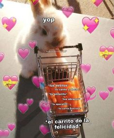 •𝙋𝙤𝙣𝙩𝙚 𝙎𝙤𝙛𝙩• - ꕤ𝖀𝖓𝖔ꕤ - Wattpad Cute Love Memes, Funny Love, Love Phrases, Love Words, Memes Lindos, Spanish Memes, Spanish Quotes, Wholesome Memes, Diy Boyfriend Gifts