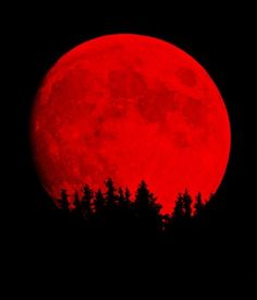 There will be four Blood Moons in the next two years. The first will be the visible in the early morning of April 15. Check local times.
