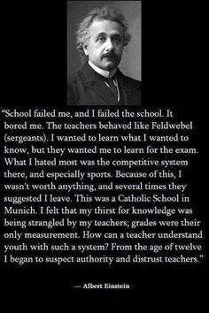 Einstein on the school system.