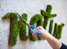 Eco Grafite: a Arte Verde invadindo as cidades - Jardim de Siguta