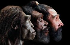 White Skin Developed in Europe Only As Recently as 8,000 Years Ago Say Anthropologists