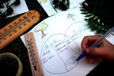 Stromová klimatizace | Učíme venku