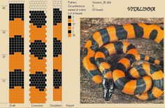 I don't care for snakes but like the colors. Bead Crochet Patterns, Bead Crochet Rope, Peyote Patterns, Beading Patterns, Jewelry Patterns, Crochet Beaded Bracelets, Beaded Crafts, Loom Bands, Motif Serpent