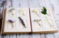 botanical album with washi tape