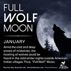 January's full Moon, like other full Moons, is rich in folklore and therefore was given many names. Watch our short video to learn the origin behind this full Moon's names: https://www.farmersalmanac.com/january-full-wolf-moon-18139 #fullmoon #folklore #legends #NativeAmerican #astronomy #stargazing