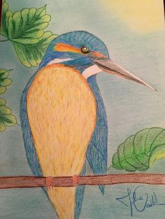 Eisvogel Bird, Drawings, Painting, Animals, Common Kingfisher, Animales, Animaux, Painting Art, Sketch