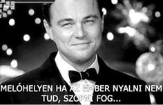 Gatsby, Sarcasm, Cheers, Van, Messages, Funny, Quotes, Movies, Movie Posters