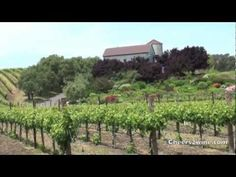 Fun Things to Do in the Napa Valley  http://www.cheers2wine.com/Napa-Valley-Wine-Tour.html