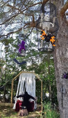 and a look at our Halloween garden display Halloween 2018, Spider, Blog, Spiders