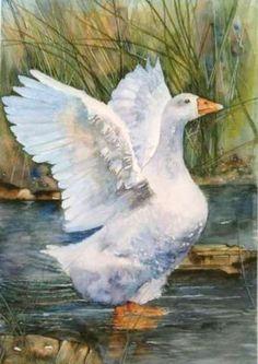 Flying Bird Drawing, Bird Drawings, Animal Drawings, Cute Drawings, Watercolor Animals, Watercolor Paintings, Art Canard, Duck Art, Chicken Painting