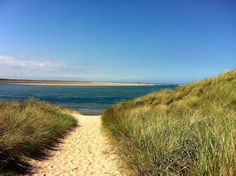 Through the dunes to Budle Bay, Northumberland