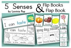 5 Senses Flip Books & Flap Book 3.00
