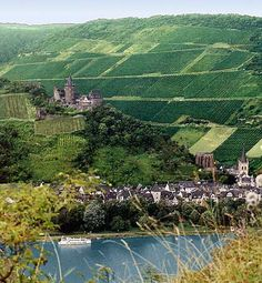 Castles - castles everywhere!  Rhine River, Germany. Went on boat cruise very nice.  Also the vineyards look so beautiful along with the castle.  Would like to do a longer trip someday.