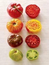 Heirloom Tomatoes: BLT Heirloom Tomato Tart Recipe