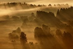 Morning rays 3 by Daniel Řeřicha on Show Beauty, True Beauty, Mother Earth, Wonders Of The World, Art Photography, Country Roads, Rays 3, Landscape, Artist