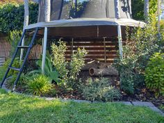 Using plant, succulents, logs and bark under a trampoline Backyard Trampoline, Backyard Playground, Trampoline Safety, Trampolines, Backyard Garden Design, Small Garden Design, Non Blondes, Home Landscaping, Garden Spaces