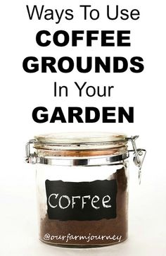 8 Ways To Use Coffee Grounds In Gardening