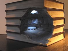 I love books and I am fascinated by the little worlds he carves into them. Montreal, QC, Canada artist Guy Laramee (title unknown)