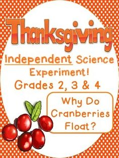On sale for $2.80! Thanksgiving Independent Science Experiment Cranberries & 3 Days of Related Morning Work