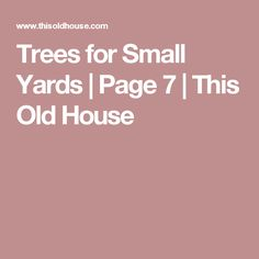 Trees for Small Yards | Page 7 | This Old House