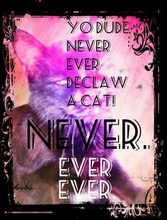 Never ever declaw