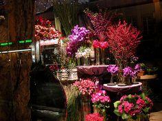 parisian flower shop | Paris flower shop - a gallery on Flickr