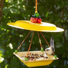 Cheap cute Birdhouse and other ideas