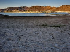 Cracked ground along the shore of Lake Mead is seen in Boulder City, Nevada, another symptom of drought research shows is becoming a global problem.