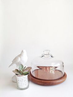 Vintage Glass and Wood Cheese Cloche Tray