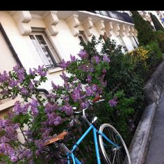 Lausanne Lausanne, Switzerland, Lifestyle, World, Purple, Places, The World, Lugares, Earth