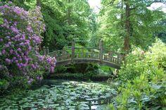 Winterbourne House & Botanic Garden