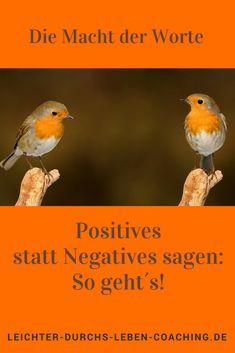 Entwickle deine Persönlichkeit, indem du lernst, freundlicher mit dir selber und mit deinen Mitmenschen zu sprechen. Denn: Worte sind mächtig und bestimmen, wie wir uns fühlen.